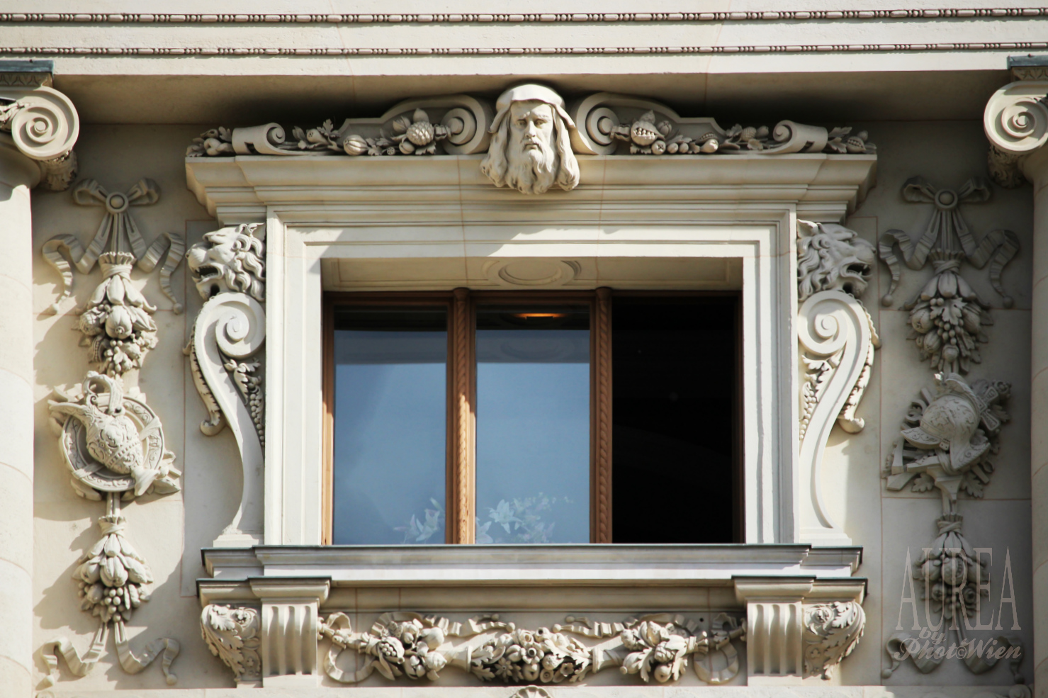 Hofburg Museum window_AUREA