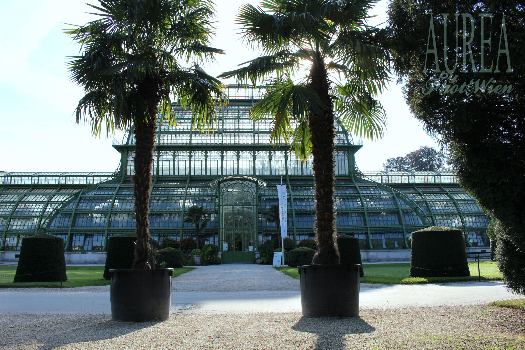 schonbrunn_palmenhaus_morning_aurea-low